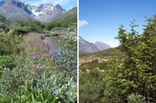 Une image contenant montagne, extérieur, ciel, nature Description générée automatiquement